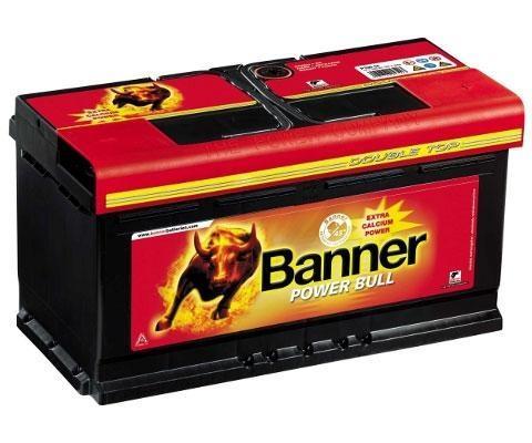 banner-power-bullorig